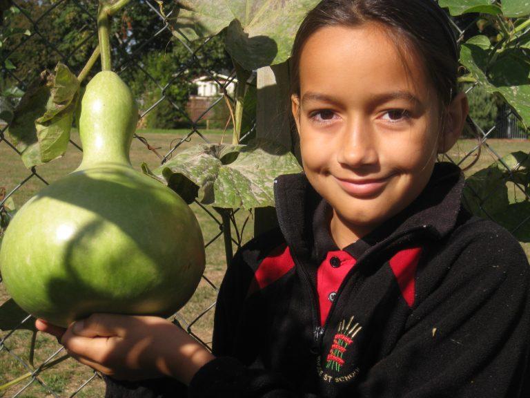 Local food and seed in Aotearoa NZ