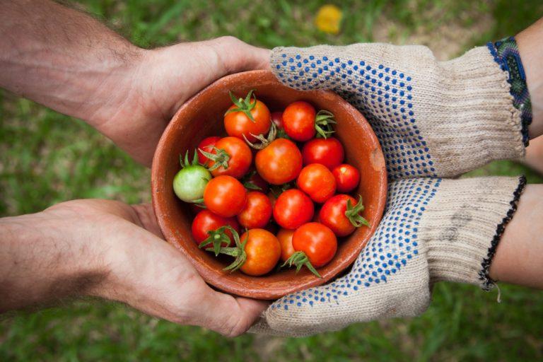 Making organic food more affordable