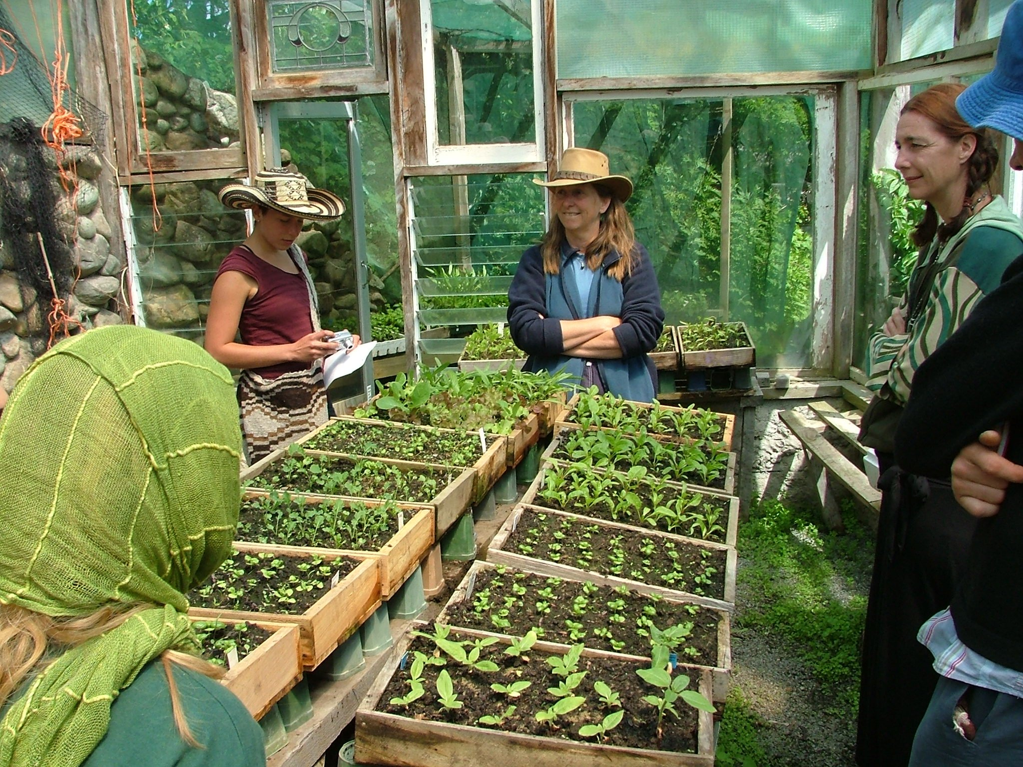 Permaculture design course soil health assn for Landscaping courses nz