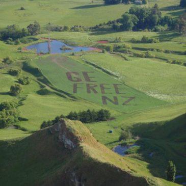 GE Free Field NZ