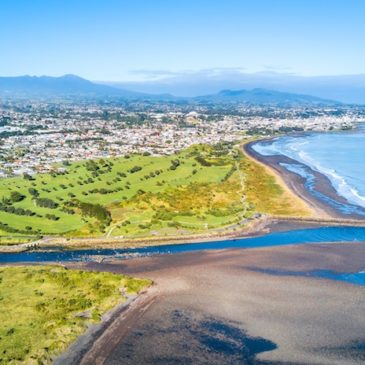 Community support for a GE-free New Plymouth