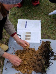 Our measurements follow established soil science methods