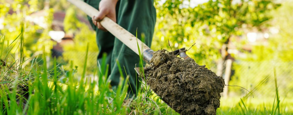 image of shovel with soil.